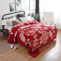 凤凰 2018新款67844系列拉舍尔毛毯 花蕾