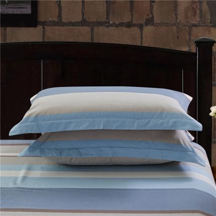 艾羽家纺 全棉高级磨毛澳棉系列单品枕套 都市风尚