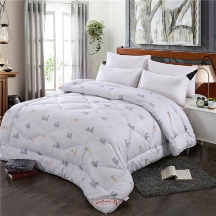 畅畅家纺 高档新款羽丝绒被芯棉被被芯 简单生活