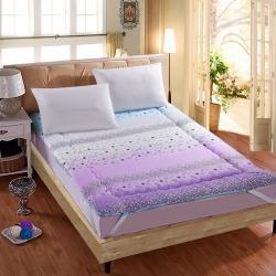 红缘坊垫业 磨毛床垫 美丽印象紫1