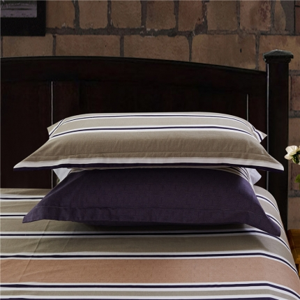 艾羽家纺 全棉高级磨毛澳棉系列单品枕套 太阳的后裔
