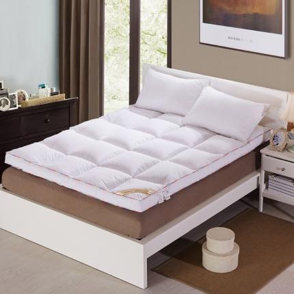 (总)畅畅家纺 柔软舒适立体羽丝绒棉床垫